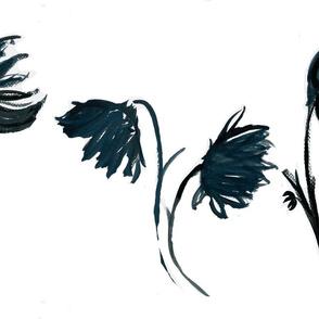 Black dahlia on white