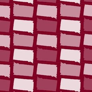 South Dakota State Shape Pattern Garnet and White