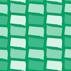 South Dakota State Shape Pattern Green and White