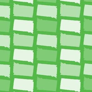 South Dakota State Shape Pattern Lime Green and White