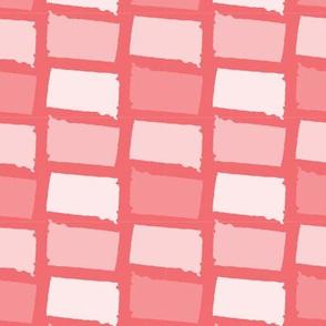 South Dakota State Shape Pattern Coral and White