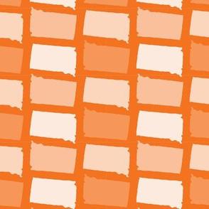 South Dakota State Shape Pattern Orange and White