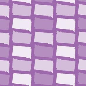 South Dakota State Shape Pattern Purple and White