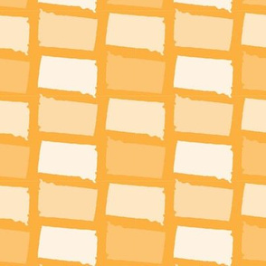 South Dakota State Shape Pattern Yellow and White