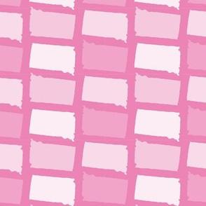 South Dakota State Shape Pattern Pink and White