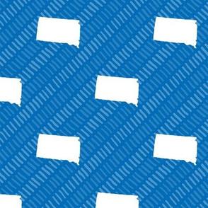 South Dakota State Shape Pattern Blue and White Stripes