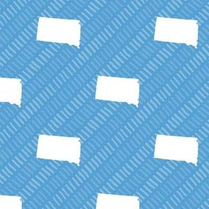 South Dakota State Shape Pattern Light Blue and White Stripes