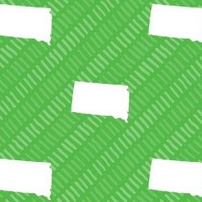 South Dakota State Shape Pattern Lime Green and White Stripes