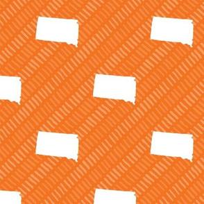 South Dakota State Shape Pattern Orange and White Stripes