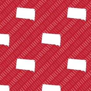 South Dakota State Shape Pattern Red and White Stripes
