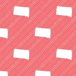 South Dakota State Shape Pattern Coral and White Stripes