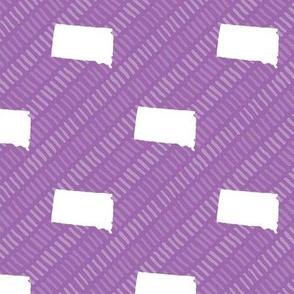 South Dakota State Shape Pattern Purple and White Stripes