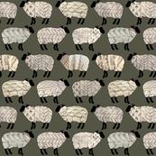 Wee Wooly Sheep in Aran Sweaters (dark khaki background)