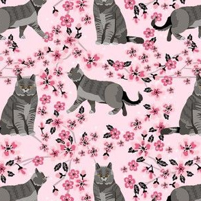 british shorthair cat fabric - cherry blossom, cat floral fabric, cat florals, cat design -pink