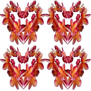 Tropical Flower Hearts on White