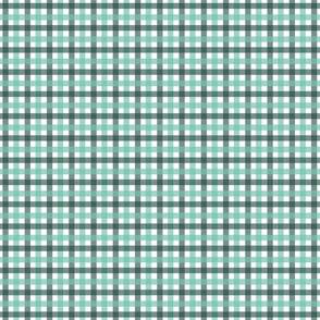 Gingham - Aqua and Forest, Small