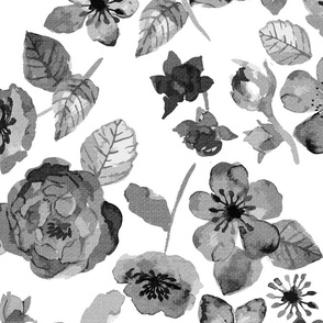 Painted Roses Black and White