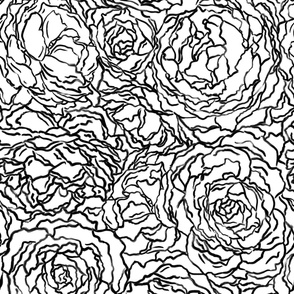 black and white painted florals | large scale