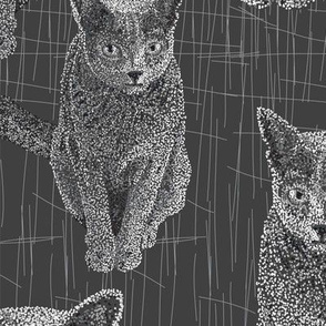 Here Kitty, Kitty- Pointillism  - Russian Blue Kitty - Large scale, B & W, dot art,  painted dots