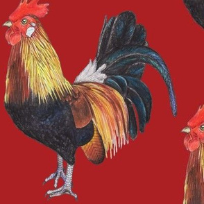 Rooster on Red - large scale