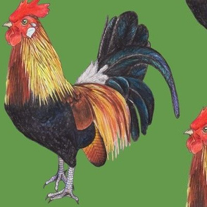 Rooster on Grass Green - large scale