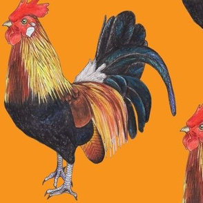 Rooster on Orange - large scale