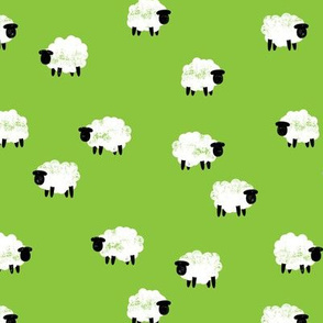 (small scale) sheep - lamb spring - green - LAD20