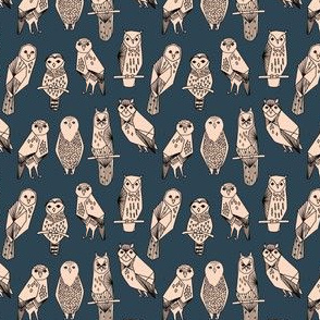 TINY - SMALL - owl // blush and navy hand-drawn illustration bird owl by Andrea Lauren