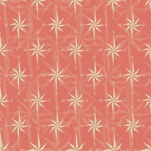 Orange nautical wind rose texture