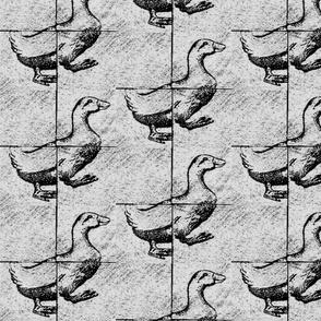 Goose A