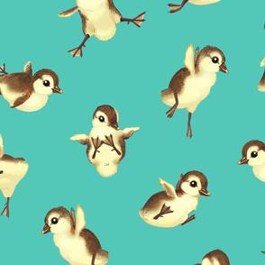 Bigger Falling Duckies