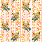 Retro Kitty* (Valencia) || cat kitten vintage flowers floral stripes 60s 70s kitsch ephemera orange pastel