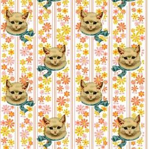 Retro Kitty* (Valencia)    cat kitten vintage flowers floral stripes 60s 70s kitsch ephemera orange pastel