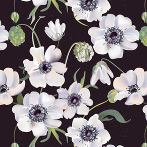 Anemone dark pattern
