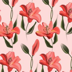 Coral lily splash