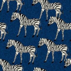 zebra fabric - zebra wallpaper, zebra print, animal print, african fabric, african print, home dec fabric - navy