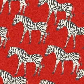 zebra fabric - zebra wallpaper, zebra print, animal print, african fabric, african print, home dec fabric - red