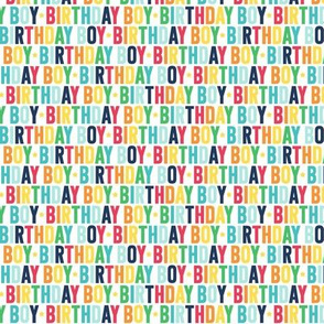 birthday boy XSM rainbow with navy UPPERcase