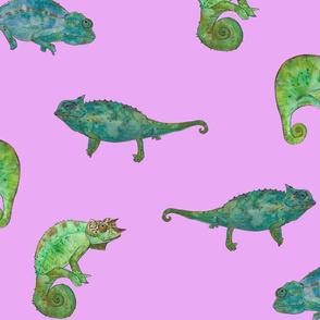 chameleon purple finish swiss jpeg