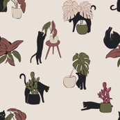 Home cats plants