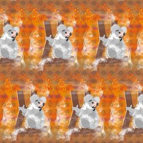 fire in the bush-koalas