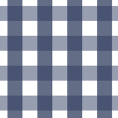 Navy Blue Gingham (Large)