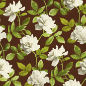 Vintage Pale Cream Roses on Brown - large