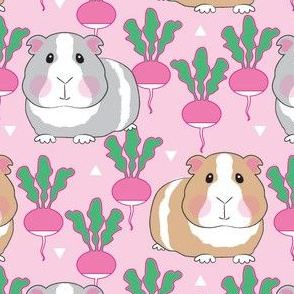 guinea pigs and radishes on pink