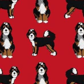 bernedoodle dog fabric - doodle dog, doodle dog fabric, dog fabric - red