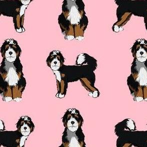 bernedoodle dog fabric - doodle dog, doodle dog fabric, dog fabric - pink