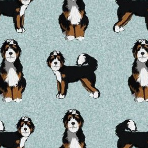 bernedoodle dog fabric - doodle dog, doodle dog fabric, dog fabric - blue