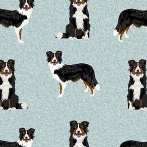 tricolored border collie fabric - dog fabric, pet fabric, tricoloured dog, dog design - blue