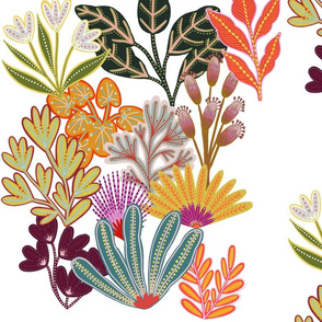 Bright and Colourful Plants