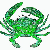 Green Beach Crabs